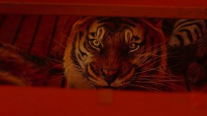 'Life of Pi': Grabbing the CG Tiger by the Tail
