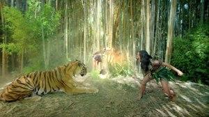 MTh Directors Help Katy Perry 'Roar'