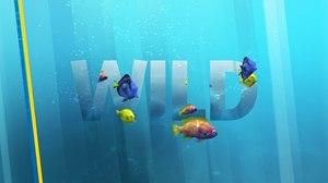 Loyalkaspar Lets in the Wild for Nat Geo WILD Refresh