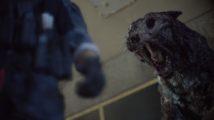 Framestore's VFX is the 'Zombie Cat's Meow' in 'Army of the Dead'