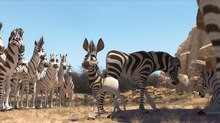 Triggerfish Takes Top Animation Prize at Africa Movie Academy Awards