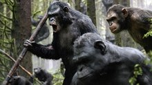 Box Office Report: 'Dawn of the Planet of the Apes' Rules with $73M Debut
