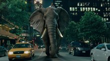 MPC Goes Behind the Scenes of 'Elephunk'