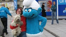 THE SMURF'S CELEBRATE THEIR 50th BIRTHDAY IN GENT