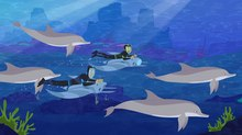 9 Story to Produce Season Four of 'Wild Kratts' For PBS Kids