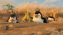 DreamWorks Animation Stock Slides following 'Penguins' Debut