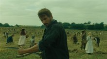 Union VFX Goes 'Far From the Madding Crowd'