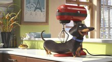 Illumination Unveils Teaser for 'Secret Lives of Pets'