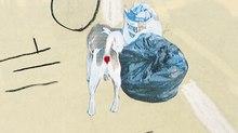 Animators Unearthed - Jonathan Hodgson