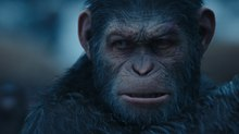 Image Gallery: Weta Brings Emotion & Drama to CG for 'War for the Planet of the Apes'