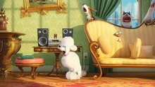 'Pets 2' Voice Role the First for Harrison Ford