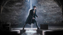 WATCH: New 'Fantastic Beasts: The Crimes of Grindelwald' Trailer Debuts at Comic-Con