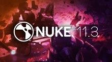 Foundry Ships Nuke 11.3