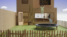 'Bloeistraat 11' and 'Mirai' Take Top Prizes at Stuttgart