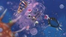The Evolution of 'Spore'