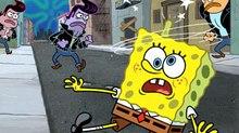Wandering Amnesiac Sponge Wreaks Havoc, Saves Day