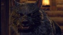Making a 'Bad-Ass' Werewolf