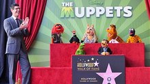 Muppets Receive Star on the Hollywood Walk of Fame