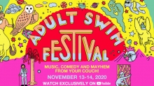 Adult Swim Festival Coming November 13-14