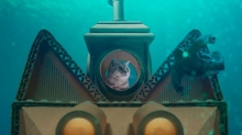 Blinkink and Whiskas Explore a Cat's Mind Using Stop-Motion and Puppetry